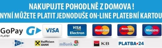 Bezpečná online platba přes zabezpečenou bránu GoPay